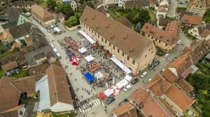 Marathon du Vignoble - Molsheim