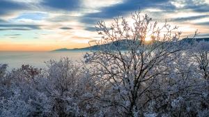 Mer de nuages - Obernai